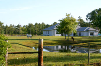 Small horse farm in Central Florida showing pond, house and two horses grazing in the front pasture.